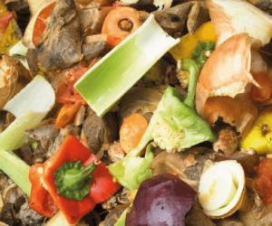 ContainerOnline Afvalsoort - organisch afval - rolcontainer Huren
