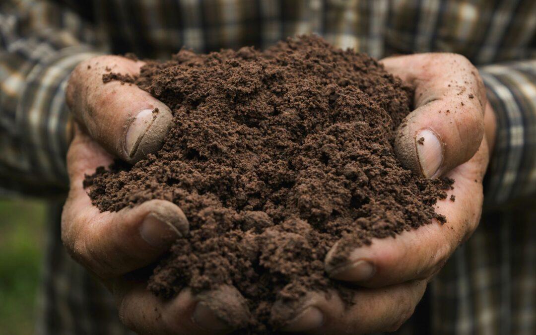 het verschil grond en gemengd grondcontainer