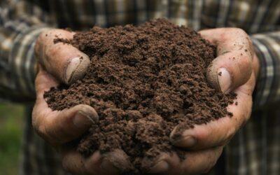 Wat is het verschil tussen een schoon grond- en een gemengd grondcontainer?